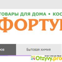 бизнес-партнеров данный интернет магазин фортуна скопин два дня