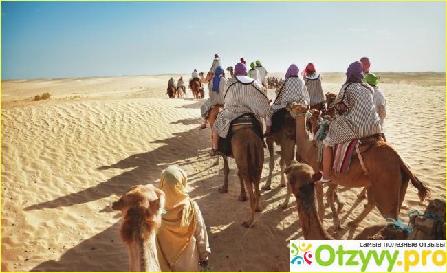 Отзывы туристов относительно отдыха в Тунисе.