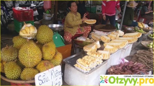 Вьетнам в ноябре погода отзывы туристов.