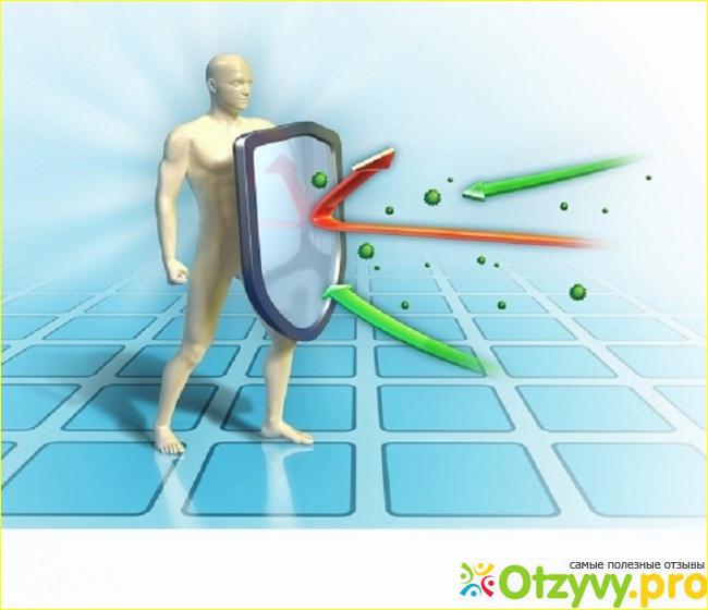 Какие иммунитеты бывают{q} Как его повысить {q}