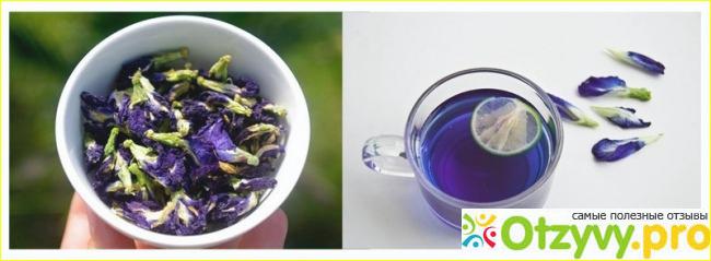 В чём полезность чая?