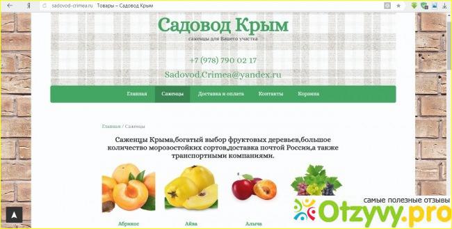 Саженцы Крыма Интернет Магазин Каталог