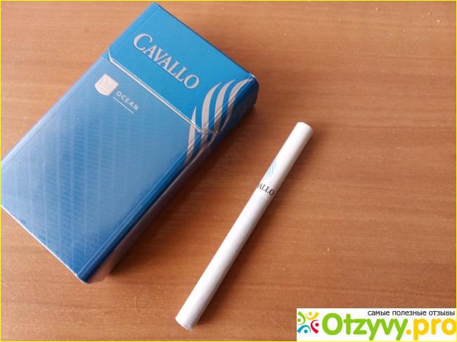 Купить контрабанда сигареты как зарядить одноразовые электронные сигареты masking