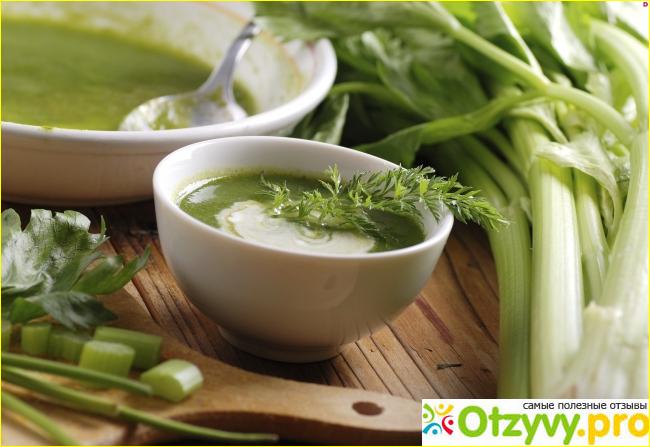 суп из сельдерея отзывы похудевших
