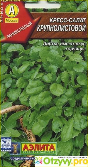 семена кресс-салата фото