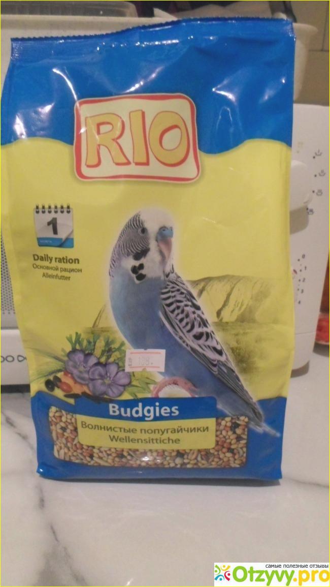 Как сделать корм для попугаев своими руками 65