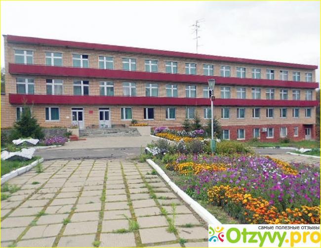 плеяна официальный сайт москва