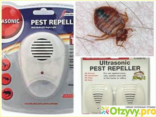 отзывы об электронном отпугивателе насекомых пест