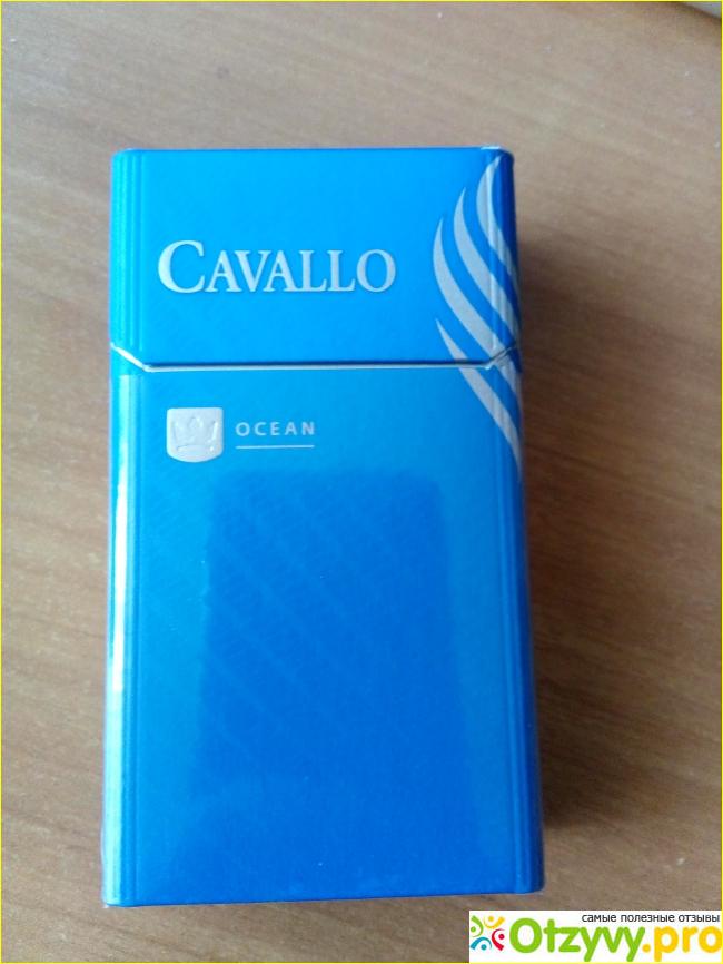 Сигареты контрабанда купить цена сигареты винстон икстайл синий купить